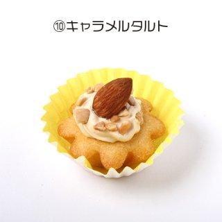 【わんちゃん用】NAMARA!タルト・キャラメル (冷凍品)