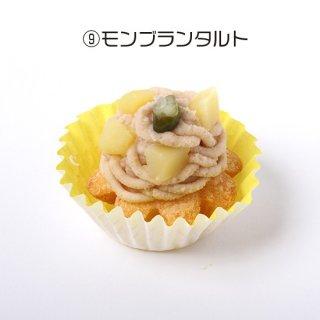 【わんちゃん用】NAMARA!タルト・モンブラン (冷凍品)