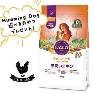 選べるおやつ付き【HALO ハロー・犬用フード】アダルト 小粒 平飼いチキン【900g】