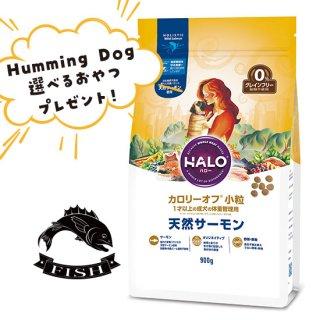 選べるおやつ付き【HALO ハロー・犬用フード】カロリーオフ 小粒 天然サーモン【900g】