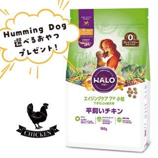 選べるおやつ付き【HALO ハロー・犬用】エイジングケア7+ 小粒 平飼いチキン【900g】