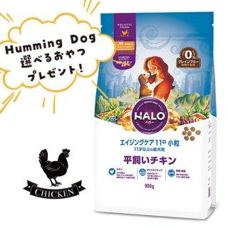 選べるおやつ付き【HALO ハロー・犬用】エイジングケア11+ 小粒 平飼いチキン【900g】