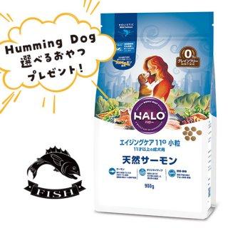 選べるおやつ付き【HALO ハロー・犬用フード】エイジングケア11+ 小粒 天然サーモン【900g】