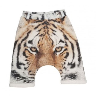 【40%OFF!】popupshop [ポップアップショップ] / BAGGY SHORTS TIGER