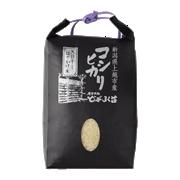 コシヒカリ特別栽培米(はさかけ/天日自然乾燥)<1kg>