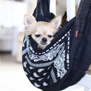 <img class='new_mark_img1' src='https://img.shop-pro.jp/img/new/icons56.gif' style='border:none;display:inline;margin:0px;padding:0px;width:auto;' />Sling bag<br>【denim sling】