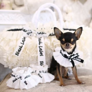 <img class='new_mark_img1' src='https://img.shop-pro.jp/img/new/icons56.gif' style='border:none;display:inline;margin:0px;padding:0px;width:auto;' />dog cape <br>【2bdogs 】