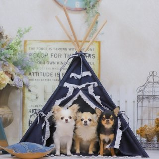 <img class='new_mark_img1' src='https://img.shop-pro.jp/img/new/icons11.gif' style='border:none;display:inline;margin:0px;padding:0px;width:auto;' />Oopie Sling Bag<br>【Louis dog】