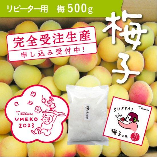 500g  だれでもおいしく梅干しづくりキット梅子2020(リピーター用) 【受付終了】
