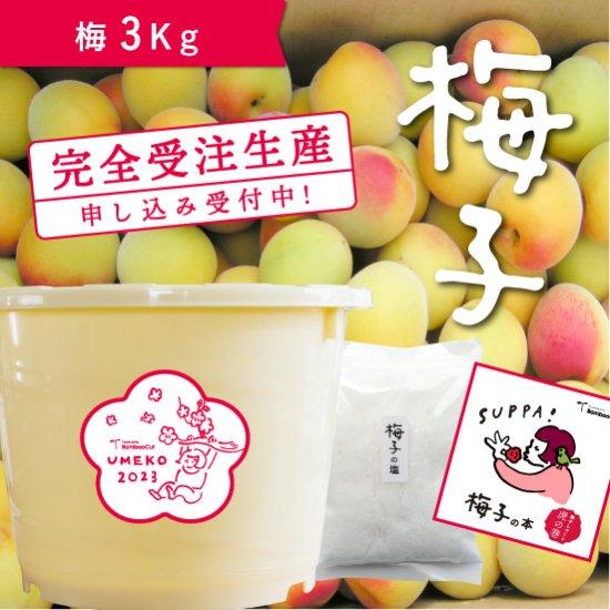3kg   だれでもおいしく梅干しづくりキット梅子2020【受付終了】