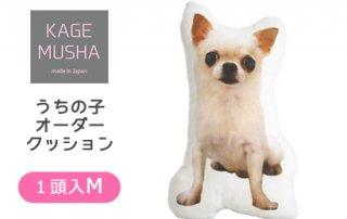 ペットの写真入りクッション☆【KAGEMUSHA】オーダーメイドクッション(1クッション1頭:Mサイズ長方約42cm)