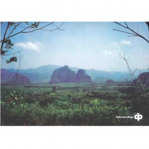 Dave Phillips / Field Recordings (CD)