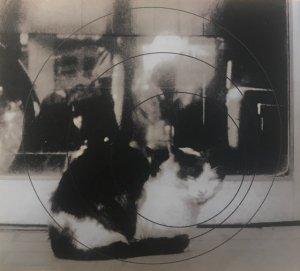 hikaru yamada hayato kurosawa duo / we oscillate! (CD)