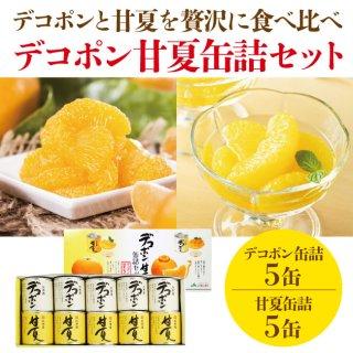 新鮮さをギュッ!甘過ぎない高級缶詰 芦北柑橘(あしきたかんきつ)
