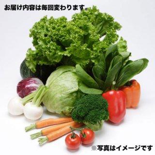 季節を感じる!野菜定期便