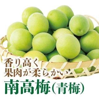 内田さん家の南高梅(青梅) 2kg(L〜2Lサイズ混合) 【2箱以上送料無料】冷蔵便