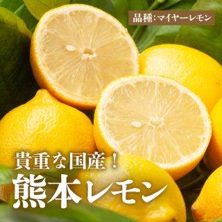 【送料無料】熊本レモン 3kg