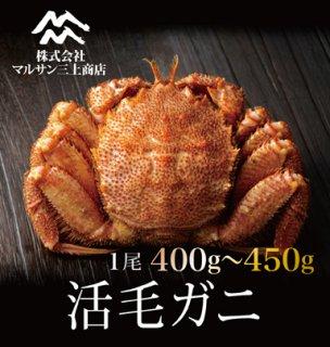 活毛ガニ 北海道産 400〜450g