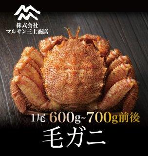 活毛ガニ 北海道産 600~700g