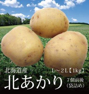 北あかり 北海道産 じゃがいも 袋詰め 1kg 約7個 L-2Lサイズ