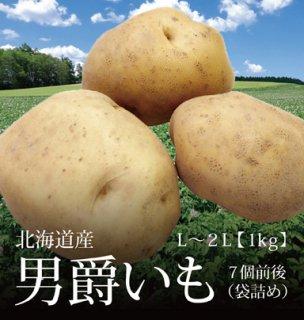 男爵いも 北海道産 じゃがいも 袋詰め 1kg 約7個 L-2Lサイズ