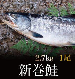 新巻鮭 2.7kg 1尾