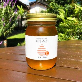 【2020年初物】れんげ蜂蜜 500g