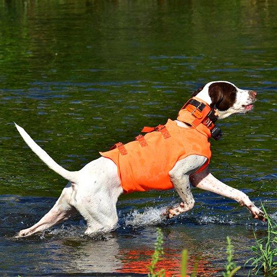 <img class='new_mark_img1' src='https://img.shop-pro.jp/img/new/icons29.gif' style='border:none;display:inline;margin:0px;padding:0px;width:auto;' />【G】猟犬用・野外活動犬用ベスト/オレンジドッグベスト Orange Dog Vest
