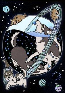 Yumino複製原画12『オオカミのホシ』