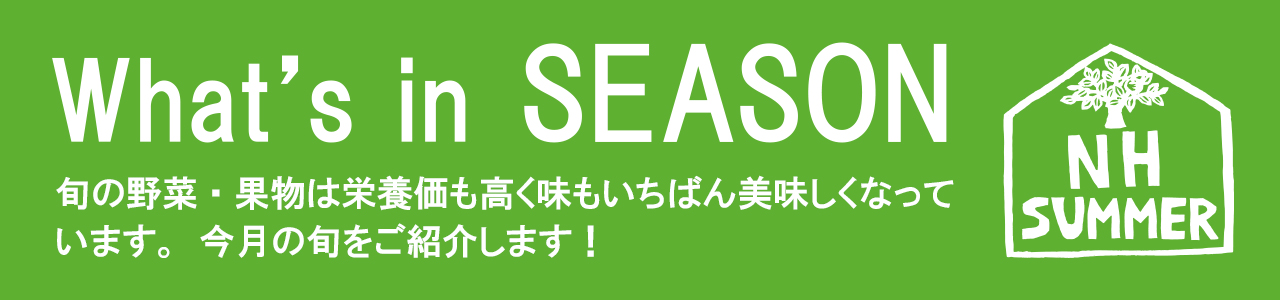 What's in SEASON今月の旬の食材