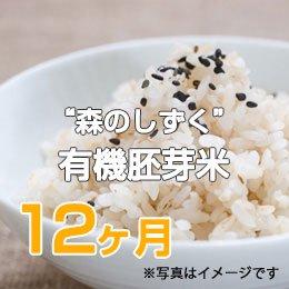 "LTV 佐藤さんの""森のしずく""有機胚芽米12ヶ月"