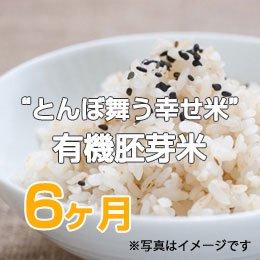 """LTV みずほの""""とんぼ舞う幸せ米""""有機胚芽米6ヶ月"""
