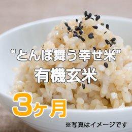 """LTV みずほの""""とんぼ舞う幸せ米""""有機玄米3ヶ月"""