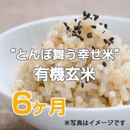 """LTV みずほの""""とんぼ舞う幸せ米""""有機玄米6ヶ月"""
