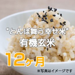 """LTV みずほの""""とんぼ舞う幸せ米""""有機玄米12ヶ月"""