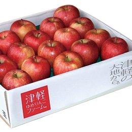 平井さんの葉とらずりんご 68002