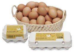 きすき平地飼い卵 10個入り