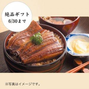 うなぎ蒲焼セット 87001【送料込み】