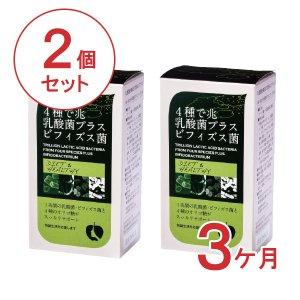 【定期便】4種で兆乳酸菌プラスビフィズス菌2個【3ヶ月コース】
