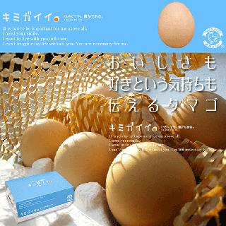 キミガイイ -高知県土佐山産 土佐ジローの卵- [6個/10個]