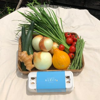 産地直送)土佐山産 厳選野菜6種|有機生姜|土佐ジローの卵