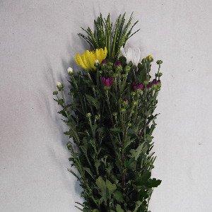 高野槙の仏花 60cm程度 1束 生花