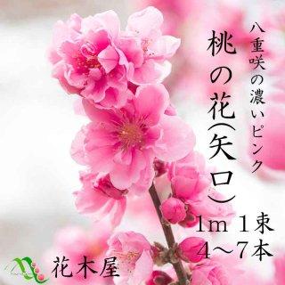 桃の花 ひな祭り 花桃1m・1把(4本〜6本) ひなまつり 雛祭り 桃の節句 飾り 花 生花 花材 プレゼント