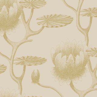 Lily / 95/4019 / Contemporary Restyled / Cole&Son