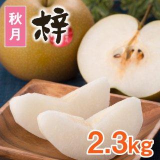 【秋月】梓2.3kg