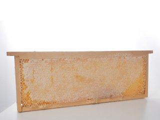 木枠付きオーガニック巣蜜(ハニーコム)※ハーブ1.8キロ前後