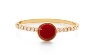 Red Coral 02