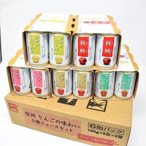 長野県産りんごジュース5種30缶