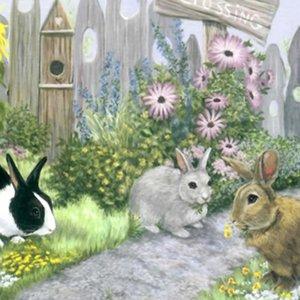 Bunny Crossing<br>(カードのみ6枚)