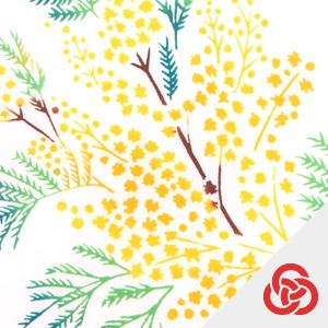 【Kenema】春の花圃